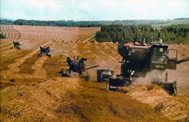как засеять зерновые на целину урала