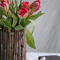 Хобби-клуб: ваза из веток