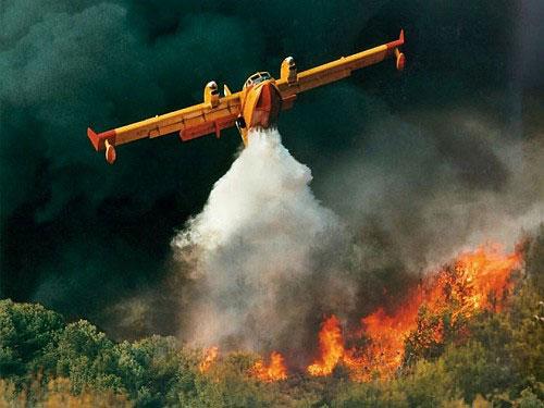 Как тушат лесные пожары